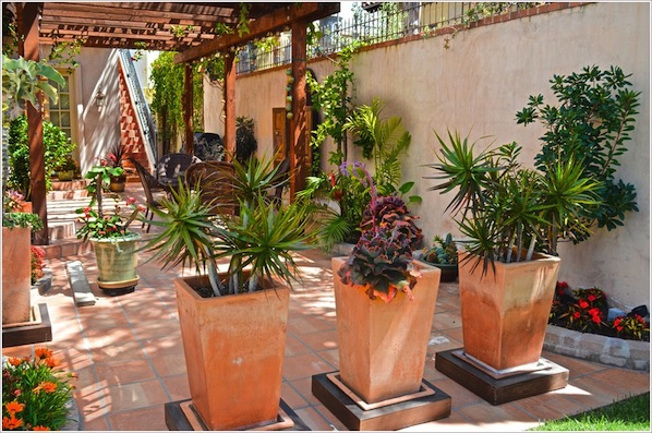 Patio-Mediterranean-Los-Angeles-arch-covered-patio-french-doors-lantern-large-planters-orange-spanish-Square-Planters-succulents-terracotta-trellis-tropical-plants-woven-chairs-wrought-iron-id-1684